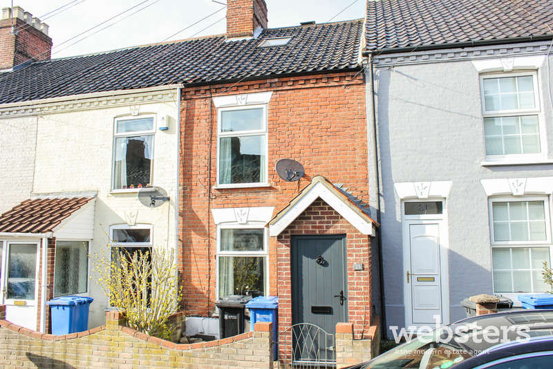3 Bedrooms Terraced House for sale in Guernsey Road, Norwich NR3