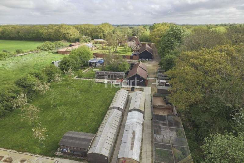 5 Bedrooms Detached House for sale in The Avenue, Moggerhanger