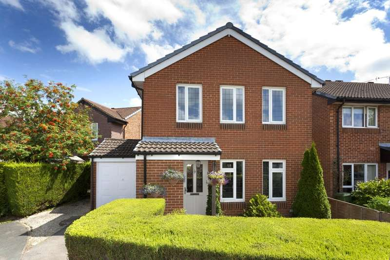 3 Bedrooms Detached House for sale in Shelley Drive, Broadbridge Heath