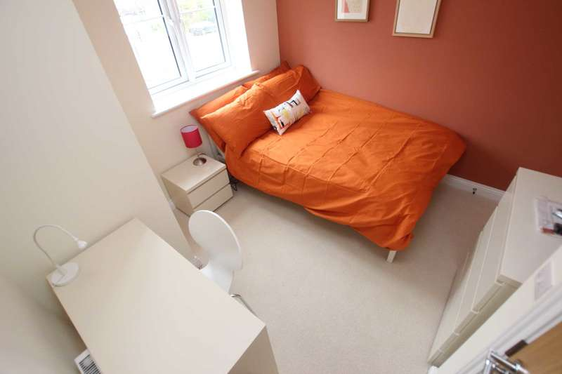 1 Bedroom House Share for rent in The Drive, Reading