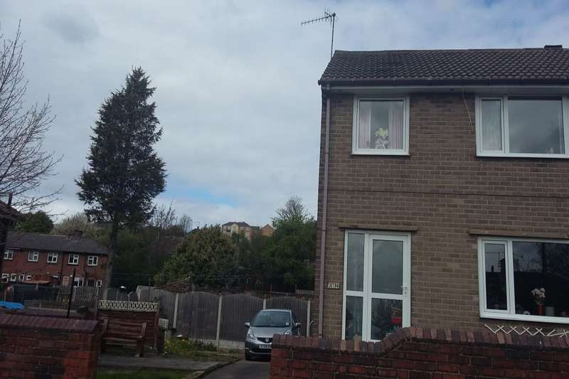 3 Bedrooms Semi Detached House for sale in South Street, Rotherham, S61