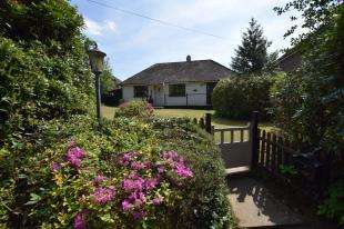 3 Bedrooms Bungalow for sale in Carters Corner, Hailsham, East Sussex
