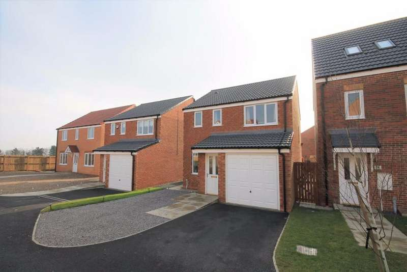 3 Bedrooms Detached House for sale in St Thomas Court, Stanley Crook