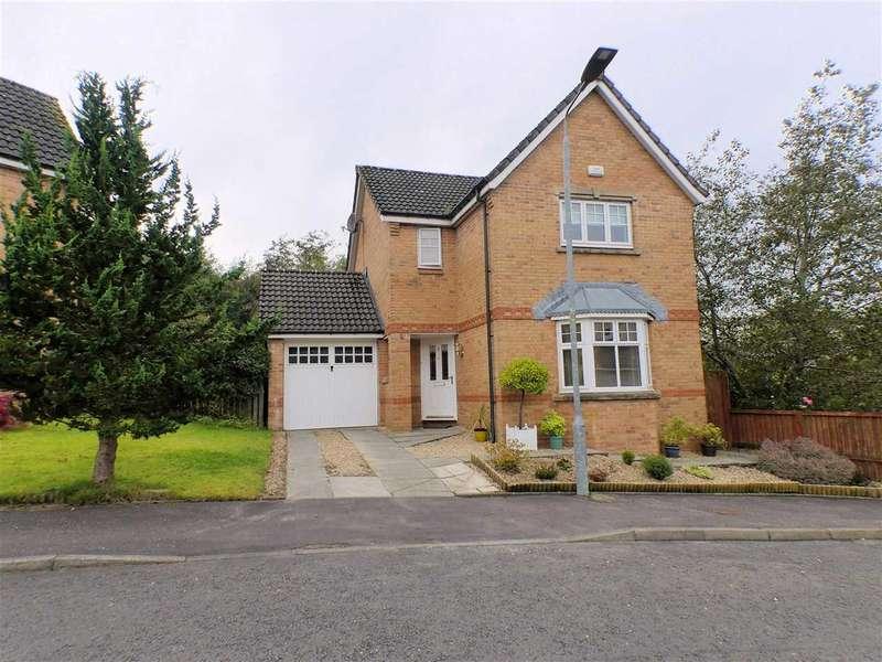 3 Bedrooms Detached House for sale in Sannox Place, Lindsayfield, EAST KILBRIDE