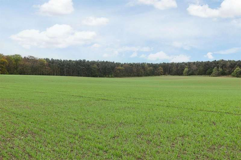 Farm Land Commercial for sale in Low Grange Farm, Wingate, County Durham