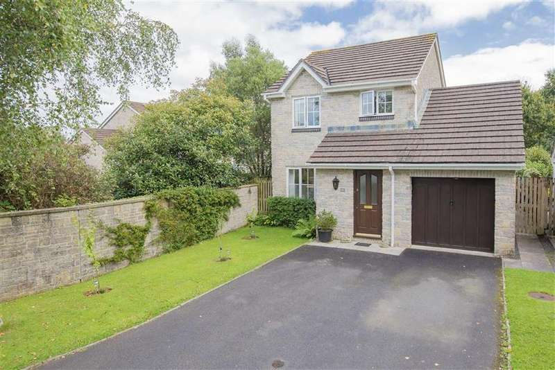 3 Bedrooms Detached House for sale in Gidleys Meadow, Dartington, Devon, TQ9
