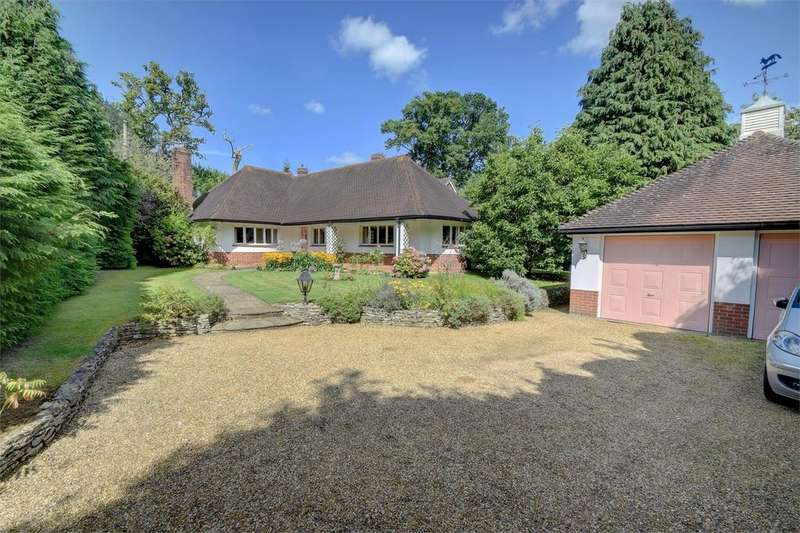 4 Bedrooms Detached Bungalow for sale in London Road, Petersfield, Hampshire