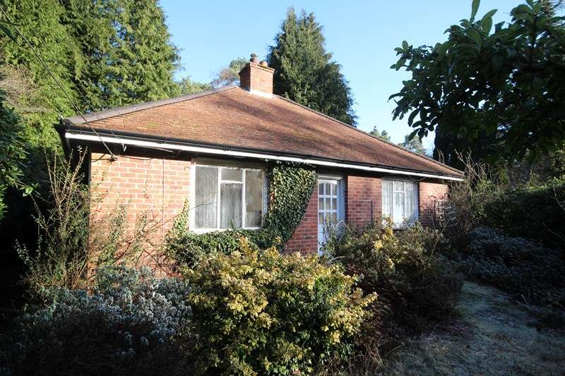 3 Bedrooms Detached Bungalow for sale in Horton Road, Ashley Heath, Ringwood