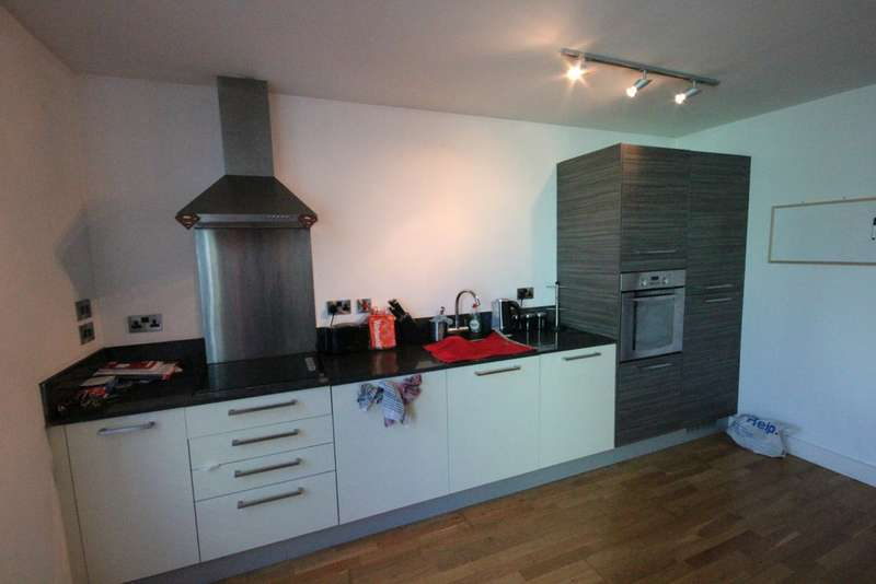 1 Bedroom Apartment Flat for sale in Wicker Riverside, 2 North Bank S3