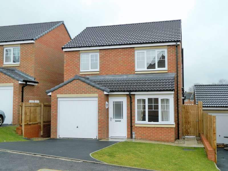 3 Bedrooms Detached House for sale in Foundry Way, Guisborough TS14