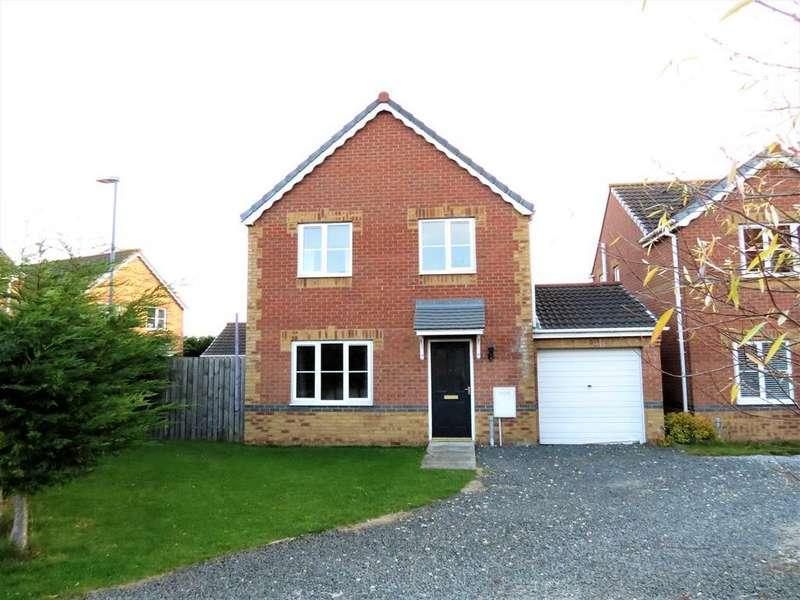 4 Bedrooms Detached House for sale in Holm Hill Gardens, Easington, County Durham, SR8 3JT