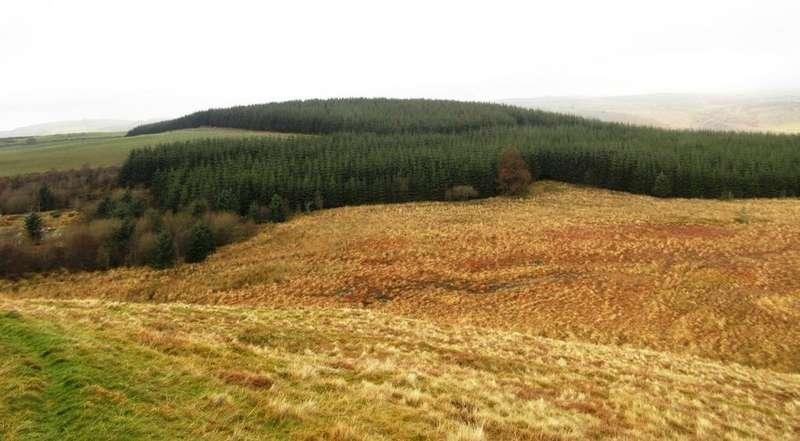 Land Commercial for sale in Bryn Bedd, Ffarmers, Llanwrda, Carmarthenshire SA19
