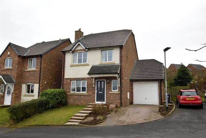 4 Bedrooms Detached House for sale in Stoneham Close, Barrow In Furness, Cumbria