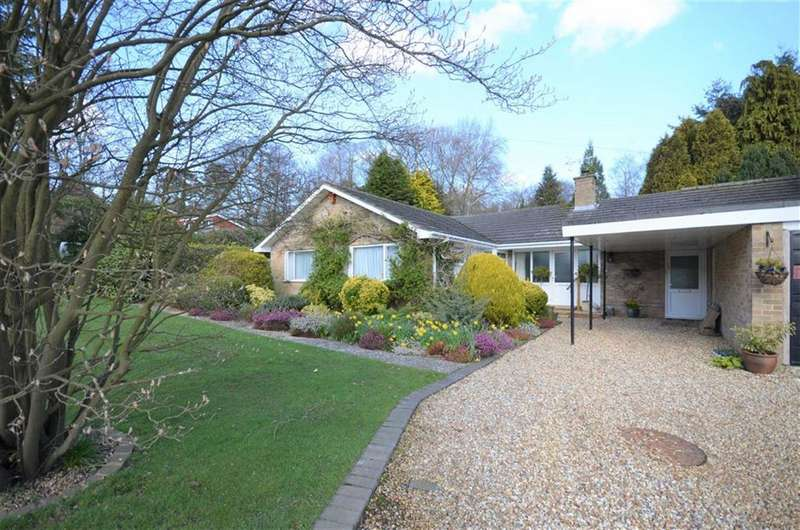 5 Bedrooms Detached Bungalow for sale in Copse Avenue, Farnham