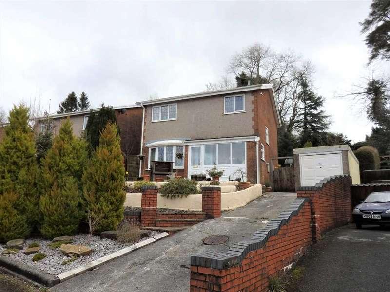 3 Bedrooms Detached House for sale in Fairoak, Pontamman, AMMANFORD