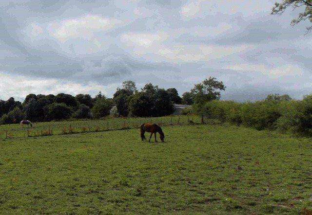 Plot Commercial for sale in Bankside Plots, Geirston Road, Kilbirnie, Ayrshire