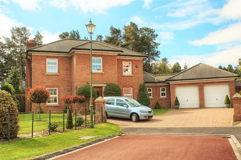 4 Bedrooms Detached House for sale in Maynard Grove, Wynyard