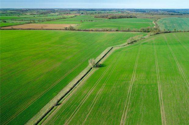 Land Commercial for sale in Woodnewton, Oundle, Northamptonshire