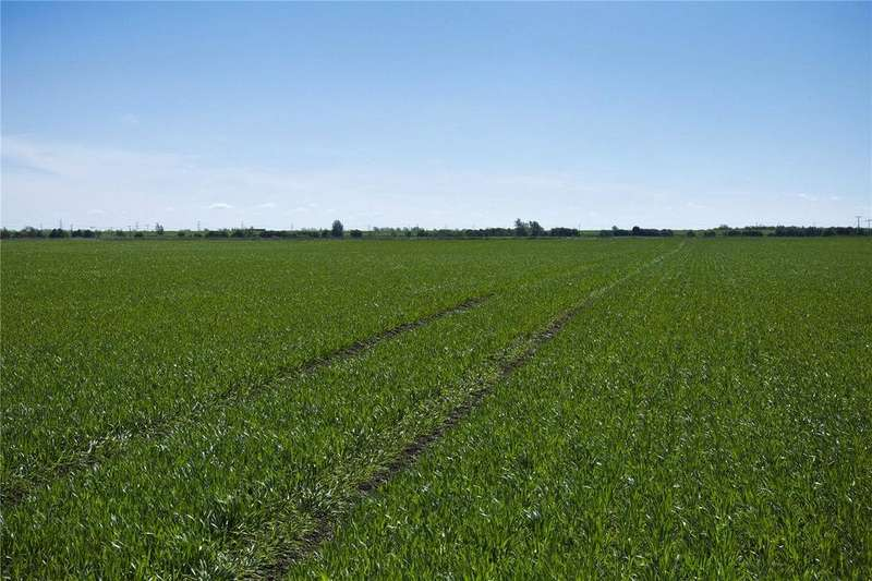 3 Bedrooms Farm Commercial for sale in Fen Farms, Lakes End, Wisbech, PE14