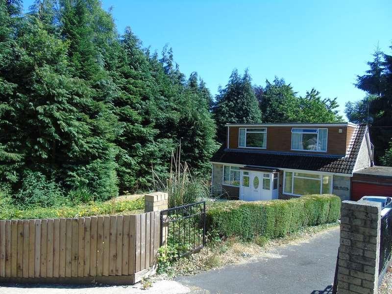 3 Bedrooms Semi Detached Bungalow for sale in Lock Up Lane, Abersychan, Pontypool