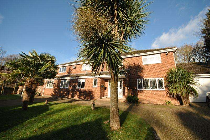 5 Bedrooms Detached House for sale in Beechlands, Norwich