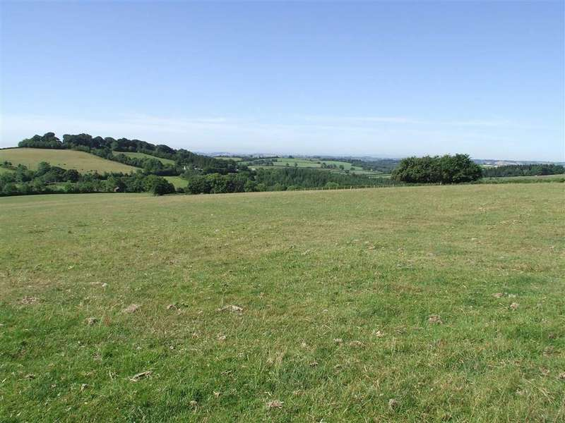 Land Commercial for sale in Huntsham, Tiverton, Devon, EX16