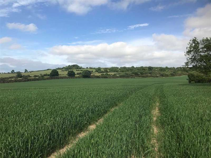 Land Commercial for sale in Kirk Merrington, Spennymoor, County Durham