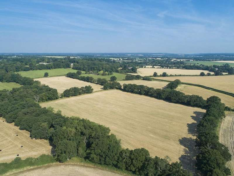 Equestrian Facility Character Property for sale in Manns Hill, Burghfield Common, Reading, Berkshire, RG7