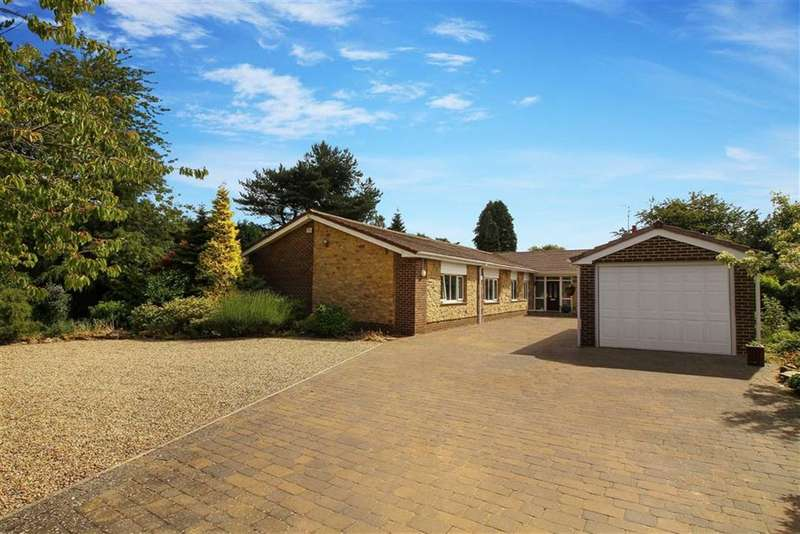 6 Bedrooms Detached Bungalow for sale in Whinfell Road, Ponteland, Northumberland