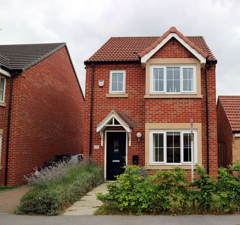 3 Bedrooms Detached House for sale in Risholme Way, Princess Royal Park, Hull, HU8