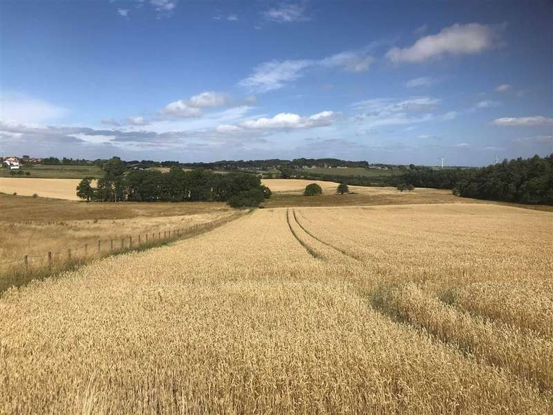 Land Commercial for sale in Langley, Witton Gilbert, Durham, County Durham