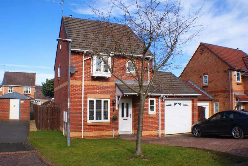 3 Bedrooms Detached House for sale in Brantwood Waldridge DH2 2UJ