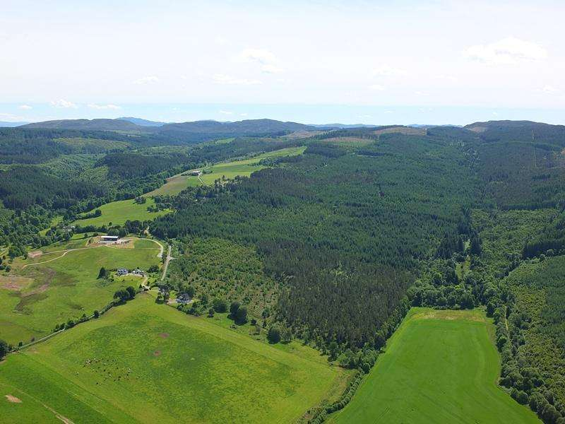 Land Commercial for sale in Femnock Wood, Near Kiltarlity, Inverness-shire IV4