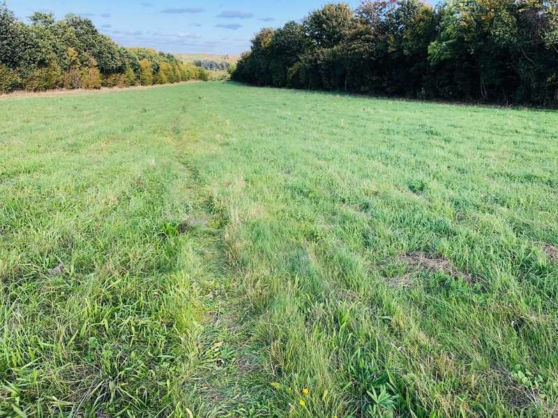 Land Commercial for sale in Gallows Hill, Hadleigh IP7 6JQ