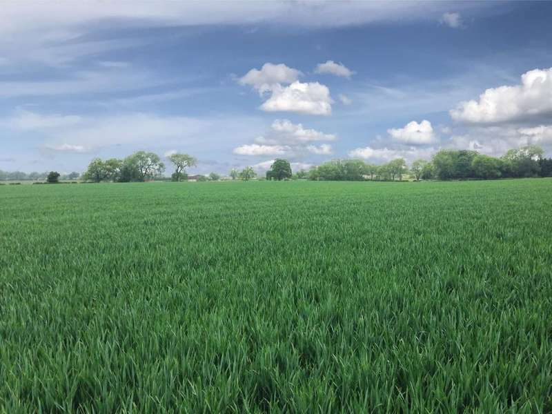 Land Commercial for sale in Land at Viewley Hill Farm, Elton