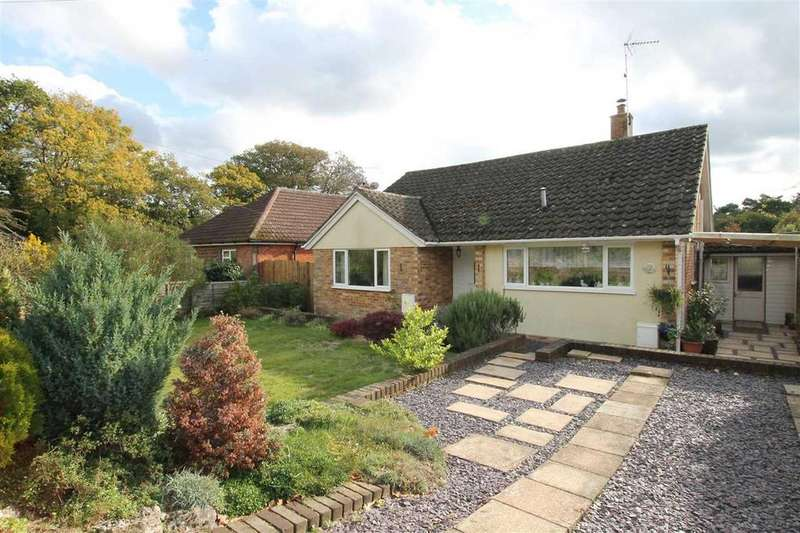 2 Bedrooms Bungalow for sale in Little Meadow, Longmoor Road, Greatham