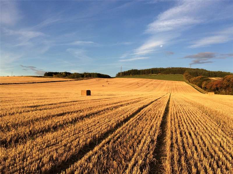 Farm Commercial for sale in Land At Alton, Inveruie, Aberdeenshire, AB51