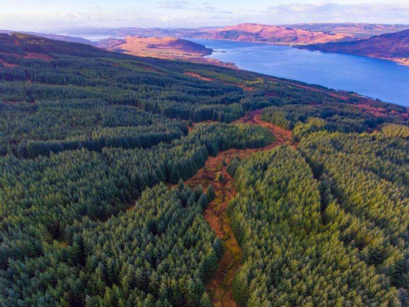 Land Commercial for sale in Letters Forest, Loch Fyne, Argyll