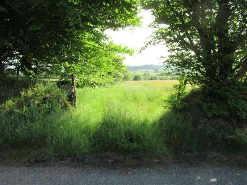 Land Commercial for sale in 4.26 Acres Accommodation Land, Crymych, Pembrokeshire