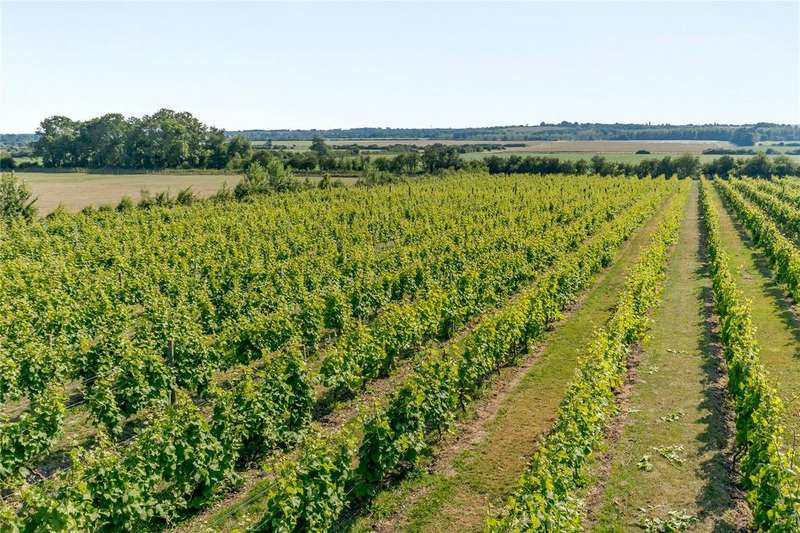 Farm Commercial for sale in Somerby Vineyard Winery, Somerby, Barnetby, Lincolnshire, DN38