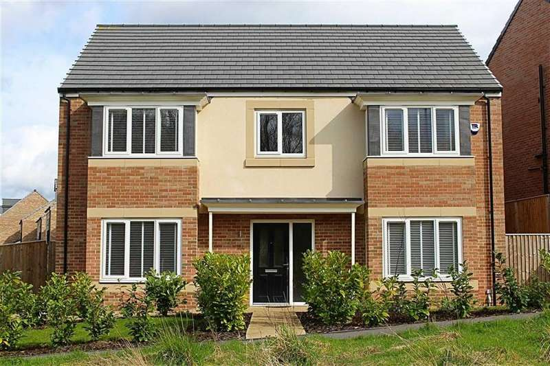 5 Bedrooms Detached House for sale in Chesterfield Drive, Marton