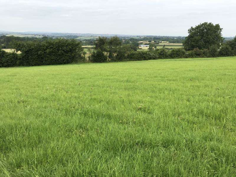 Farm Land Commercial for rent in Horsepool Farm, Tog Hill, Wick, Avon