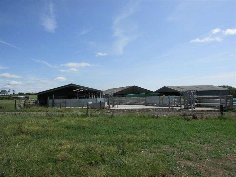 4 Bedrooms Farm Commercial for sale in Corngafr, Llanboidy Road, Meidrim, CARMARTHEN