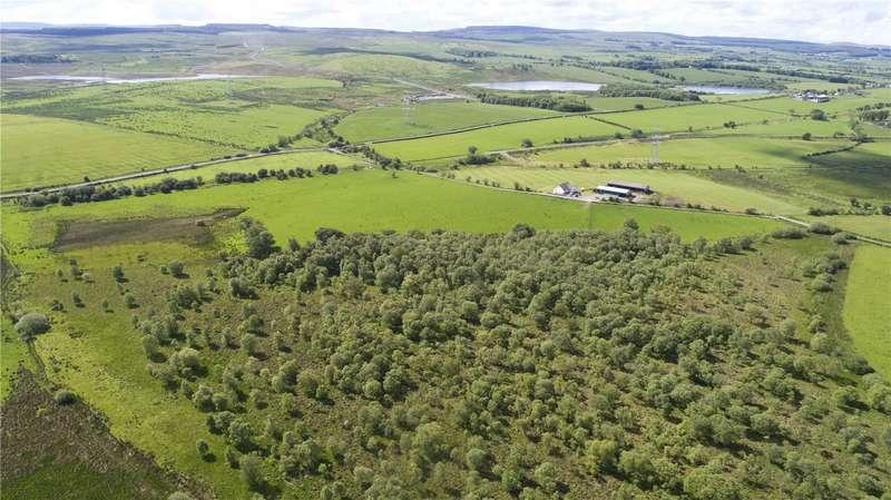 Land Commercial for sale in Beechknowe Farm Lot 2, By Ochiltree, East Ayrshire, KA18