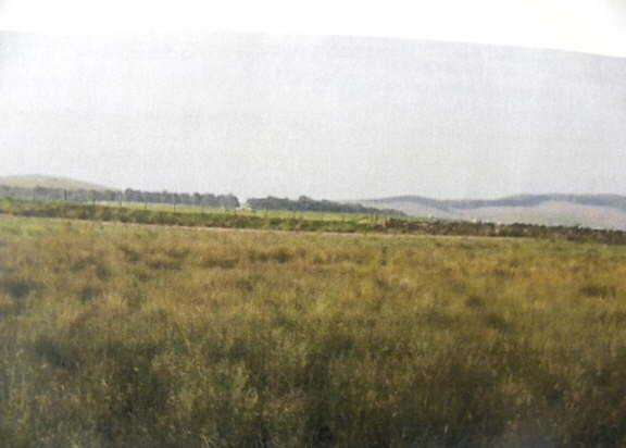 Land Commercial for sale in Lampeter