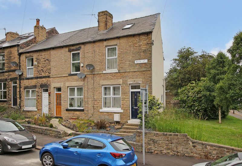3 Bedrooms End Of Terrace House for sale in Bute Street, Crookes