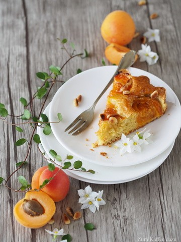 Rezept Aprikosen-Kuchen mit Olivenöl
