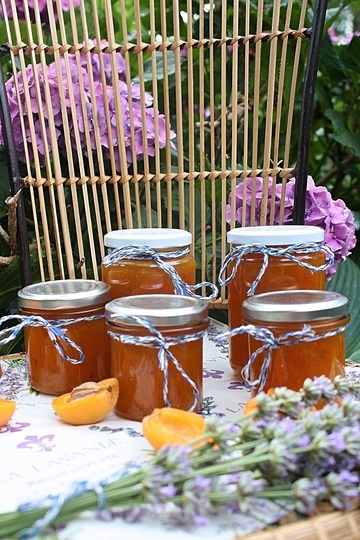 Rezept Aprikosenmarmelade mit Lavendel