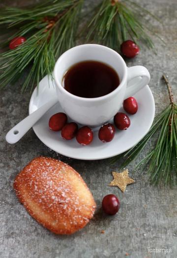 Rezept Cranberry Orangen Madeleines