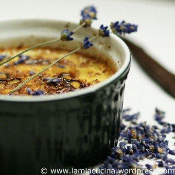 Rezept Creme brulée mit Lavendel